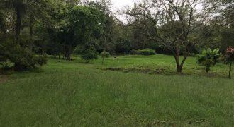 1 Acre Plot in Garden Estate
