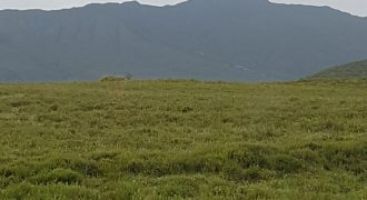12 Acres for sale in Naivasha.