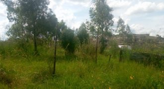 ¼ Acre Land for Sale In Membley.