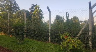 ½ Acre Land for Sale in Kitisuru.